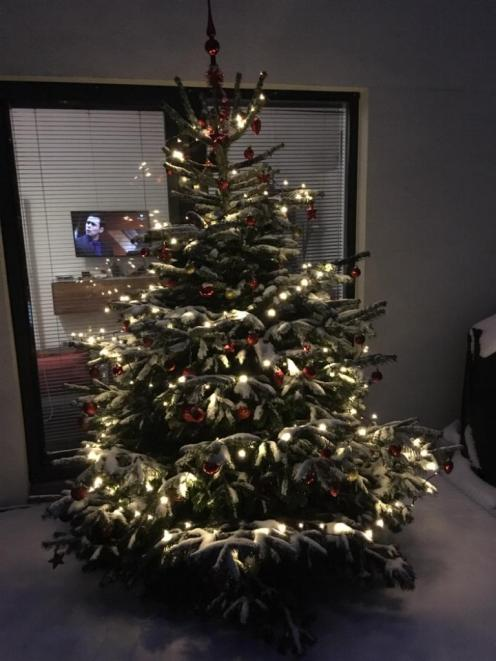 weihnachtsbaum 1