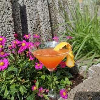 Orange Gin 3