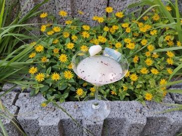 Litschi-Gincocktail 2
