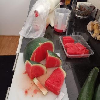 Meloneneis 1