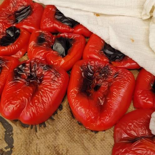 Paprika eingekocht 1