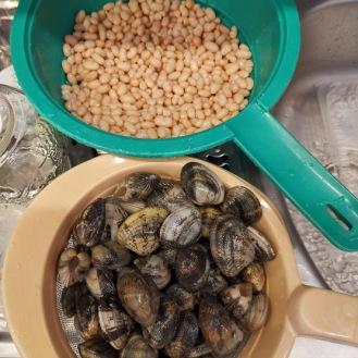 Fagioli con le vongole - Venusmuscheln mit Bohnen 6